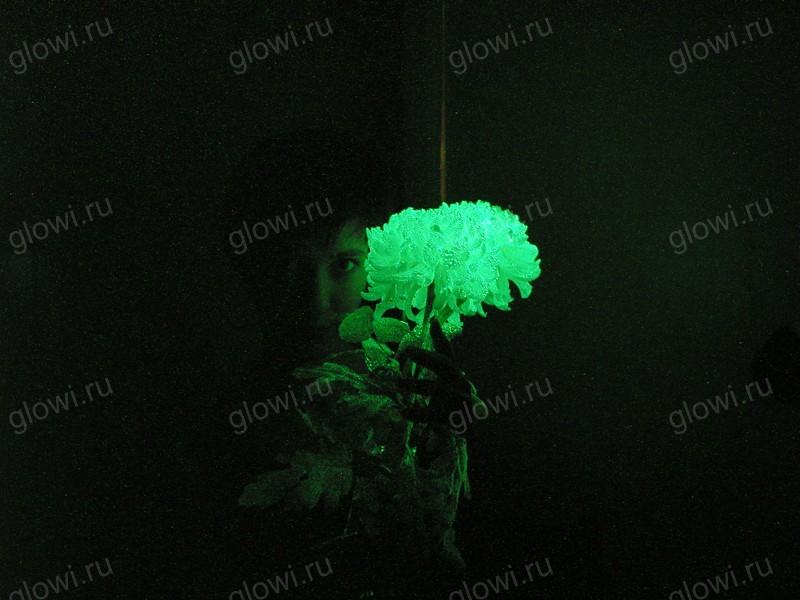 Как сделать светящиеся цветок